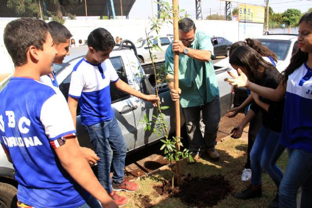 Projeto de arborização urbana é implantado entre as escolas estaduais Álvaro Guião e João Brembatti Calvoso. Foto: Secom/Andradina