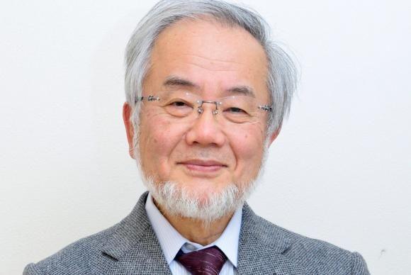 O cientista japonês Yoshinori Ohsumi ganhou o Prêmio Nobel de Medicina de 2016 pela sua descoberta do mecanismo de autofagia EPA/TOKYO INSTITUTE OF TECHNOLOGY/HANDOUT MANDATORY CREDIT HANDOUT EDITORIAL USE ONLY/NO SALESTOKYO INSTITUTE OF TECHNOLOGY/HANDOUT