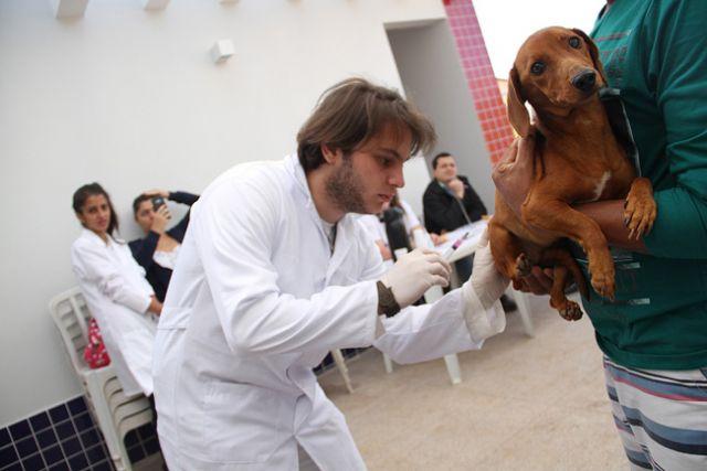 Vacinação acontece no sábado das 8 às 17h e no domingo das 8 às 12h. Foto: Divulgação/Prefeitura
