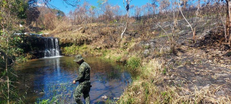 Multas aplicadas pela Polícia Militar Ambiental após constatar queimada ilegal em Garça somam mais de R$ 500 mil — Foto: Polícia Militar Ambiental/ Divulgação