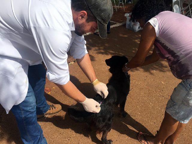 Teodoro, campo do Jardim das Águas, Secretaria de Agricultura e base comunitária do Gasparelli serão ponto de vacinação em cães e gatos. Foto: Secom/Andradina